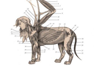 Sphinx 2 web