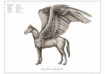 Pegasus Print copy